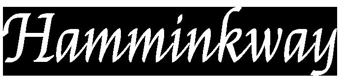 Hamminkway - Travel Storytelling